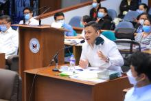 Angara calls for more government support for MSMEs to go online